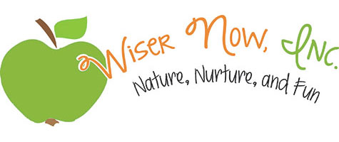 Wiser Now Inc Logo